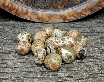 10% off July 4th Tumbled Stone - Leopardite- Tumbled Leopardite - (RK78B15-02)