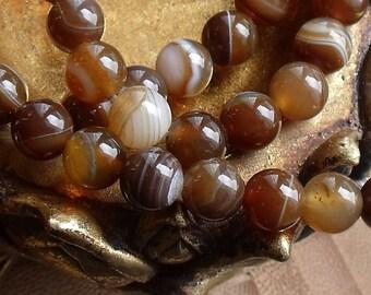 5 AGATE beads Brown round 8mm natural Madagascar origin