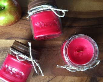 Farm Stand Apple Candle 10 oz Coconut Soy Wax Candle Cotton Wick Candle Vegan Candle Holiday Doughnut Candle