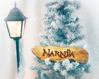 Narnia Sign, Your Own Narnia, Chronicles of Narnia, Aslan, Lion, Witch, and the Wardrobe, Narnia Wall Art, Narnia Home Decor, C S Lewis
