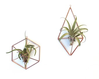 Himmeli air plant holders | geometric decor in copper or brass [with or without tillandsia] wire planter