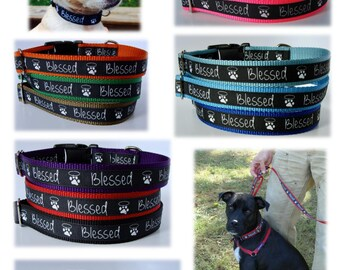 Blessed Paw Print Dog Collar or Leash - Ready to Ship!