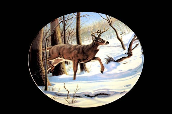 1989 Collectible Plate, Dominion China, Canada's Big Game Collection, The White-Tailed Deer, Limited Edition, Decorative Plate, New In Box