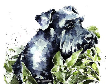 Flora Schnauzer -  Print Watercolour A3 (30*40cm/16*12 Inches)