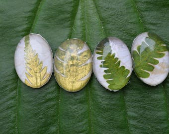 Resin Fern Cabochons 13x18mm lot of four