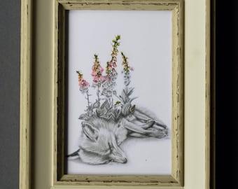 Beautiful Death Fox with Fox Gloves Framed Print
