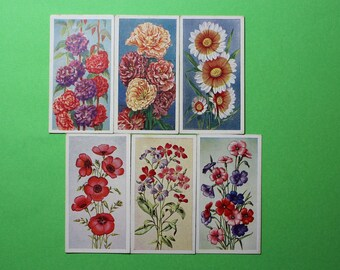 Vintage Cigarette Card Godfrey Phillips Ltd Annuals 1939 Bright Clear Colours 6/50 For Sale Excellent Condition Collage Craft Item
