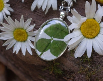 Real Flower Necklace resin jewelry Clover necklace nature jewelry Irish jewelry clover pendant lucky clover Four leaf clover gift for her