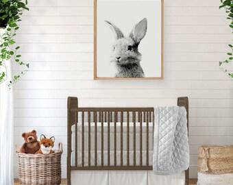 Woodland Creatures, Forest Animal, Rabbit Print, Large Poster, Bunny Print, Woodland Wall Art, Woodland Nursery Art, Woodland Baby Shower