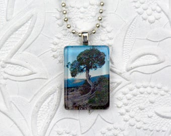 Rectangle Photo Pendant depicting Tree and Mountain View Tree necklace Tree Pendant Tree Jewelry