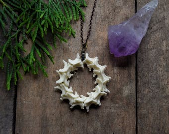Snake Vertebrae Necklace - Bone Jewelry - Taxidermy - Taxidermy Jewelry - Bone Necklace