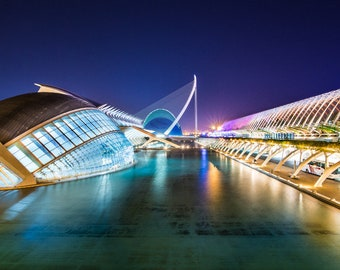 Valencia, City of Arts and Sciences, Ciutat de les Arts i les Ciències, night view. España, Spain. Romantic print, home decor