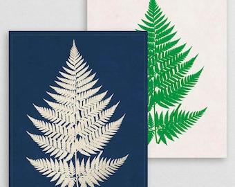 Classic Fern VIII- Botanical Decor- Botanical Gifts- Prints for Decor- Botanical Art- Ferns- Nature -Vintage -Vintage Prints -Vintage Art