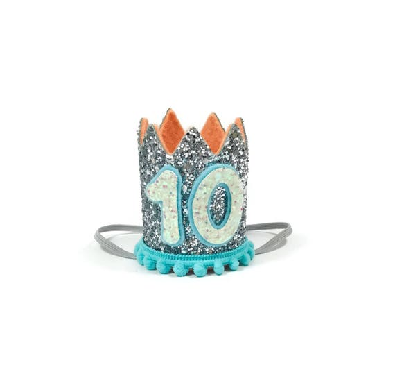 10th Birthday Crown || Any Age || Dog Birthday Hat || Pet Party || Birthday Crown