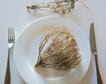 Tiny Tumbleweed from Santa Fe