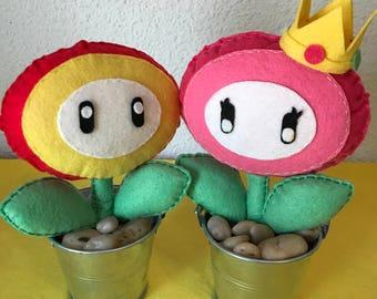 Fun Super Mario Bross plants!