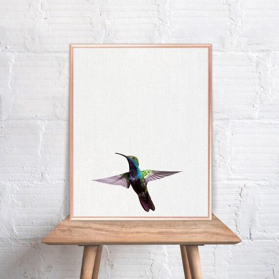 Superbe Hummingbird Wall Art / Hummingbird Home Decor / Hummingbird Print /  Hummingbird Art / Hummingbird Wall Decor / Peekaboo Animal #48