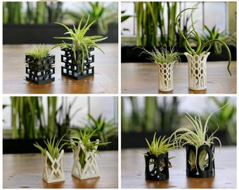 "Unique ""Breathing"" Air Plant Holders Multiple Styles"