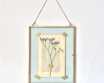hanging glass specimen frame with sea lavender pressed flowers - large