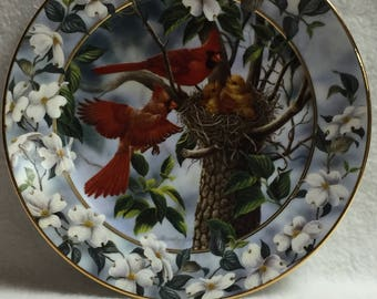 Bradford Exchange Signs of Spring - 'A Family Feast' Cardinal Collector Plate (#070)