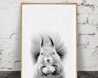 Écureuil impression, Woodlands Animal Wall Art, décor de chambre d'enfant, téléchargement numérique, Art de la chambre pour enfants