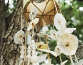 Florida Shell Wind Chime / Shell Wind-chime / Handmade Windchime / Handmade Wind-Chime / Beach House Decor / Shell Decor / Natural Windchime