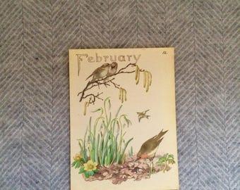 Genuine vintage framed botanical drawing, flower illustrations, print, floral, glass frame, double sided February birthday gift birds