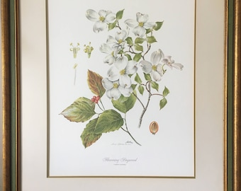 "Vintage Framed ""FLOWERING DOGWOOD"" by Anne Ophelia Dowden Signed Print 1969"