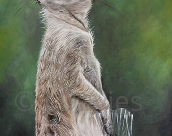 Meerkat Print, Meerkat painting, meerkat art, Meerkat Artwork, Meerkat painting