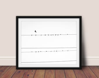Birds Print, Black and White, Birds on a Wire, Birds Poster, Minimalist Poster, Printable Art, Bird Decor, Monochrome Print,Scandinavian Art