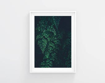 Leaves Print, Leaves Wall Art, Leaves Poster, Floral Print, Floral Wall Art, Floral Printable, Minimalist Poster, Botanical print