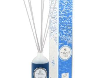Gourmet oriental Fragrance Diffuser