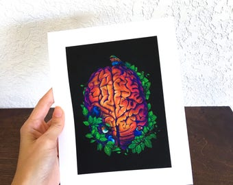 Bird Brain Limited Edition print of original colored pencil drawing