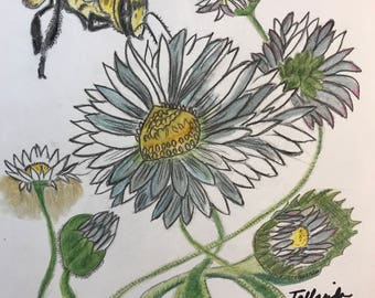 Bumble Bee and Daisy Drawing