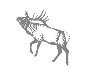 8 Moose