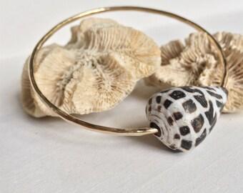 Hebrew Cone Shell Bangle, Shell Bangle