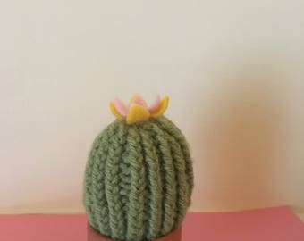 Mini Knit Cactus
