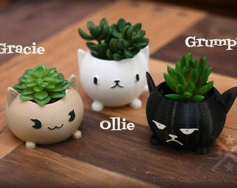 Succulent Planter Set, Cat planters, Kitty planter, Planter Set, Mini planters, animal planter, small plant holder, air plant holders