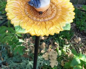 Sunflower with bird, feeder