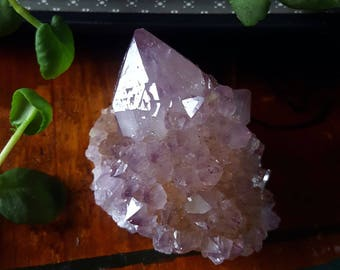 Spirit Quartz - Spirit Quartz Crystal - Purple Spirit Quartz Cactus Quartz Fairy Quartz Point - Purple Spirit Quartz Point - Spirit Quartz
