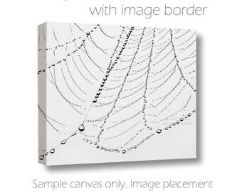 Spider Web Photography-Fine Art Wall Canvas-20x30 Raindrops-Black & White Canvas-Abstract Nature Art-Black White Decor-Rain on Spider Web