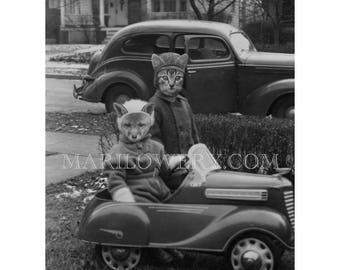 Cat Art Print, Black and White Animals in Clothes Collage Art Print, Anthropomorphic Fox Art, 8.5 x 11 Inch Print, frighten