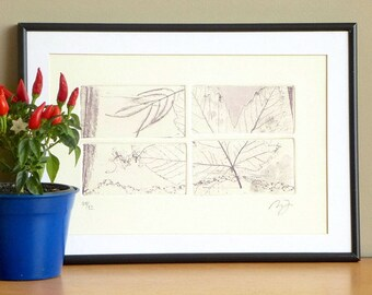 Original Etching Print ASPEN WINDS Leaves Garden Aquatint Printmaking Abstract Feather Shabby Country Home Wall Decor Fine Art Print 12x8