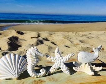 Nautical Drawer Knobs / Nautical Door Knobs / Seashell Knob / Starfish Knob/ Whale Knob/ Seahorse Knob