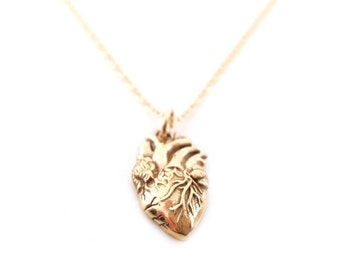 Anatomical Heart Charm Necklace - 14k Gold Fill Necklace - Simple Jewelry - Dainty Necklace - Gold Fill Jewelry - Heart Necklace