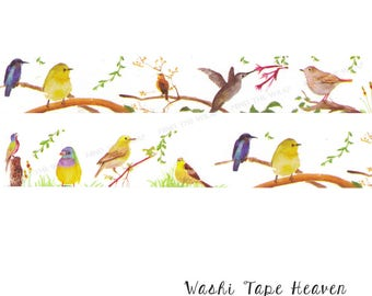 """NEW Wide """"Birds"""" Washi Tape - 30mm x 10m - Hummingbird Songbirds Planners Decoration Collage Paper Crafting Supply"""