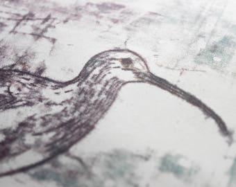 Curlew Monoprint