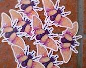 star rhino beetle /// illustration sticker
