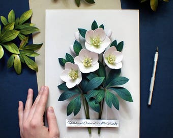 Hellebore Botanical Illustration - Hellebore Art - White Flowers - Green Wall Decor - Floral Nursery Art - Paper Quilling - 21x30cm