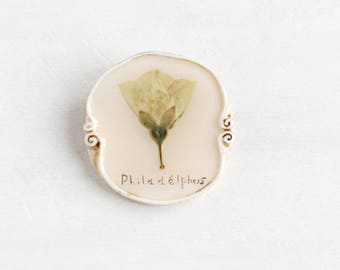 Philadelphus Brooch, Romantic Brooch, Real Flower Brooch, Rustic Jewelry, Gentle Brooch, Real Flower Jewelry, Vintage Brooch, Flower Brooch